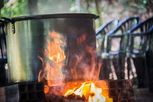 the ayahuasca brewing process